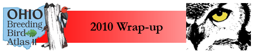 2010 Wrap-up