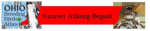 Summer Atlasing Begins