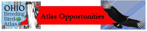 Atlas Opportunities