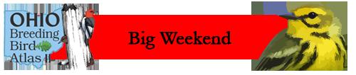 Big Weekend