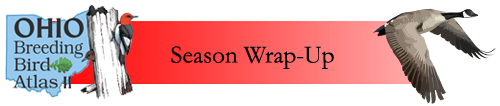 Season Wrap-up