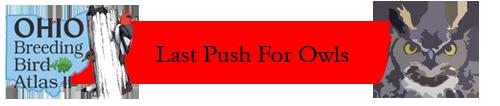Last Push For Owls