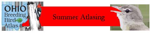 Summer Atlasing