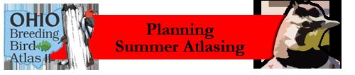 Planning Summer Atlasing