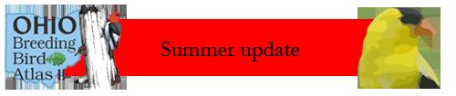 Summer Update
