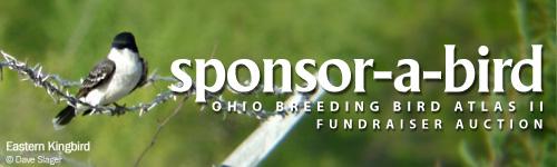 sponsor-a-bird