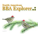 BBA explorer